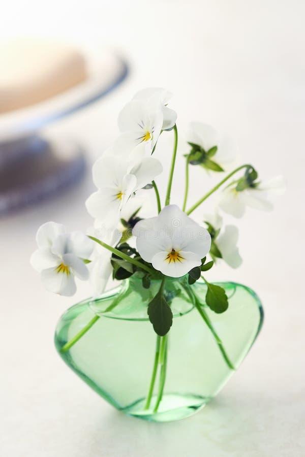 white för tvål för badpansiesplats royaltyfri foto