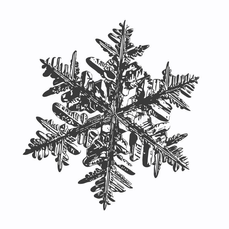 white för vektor för bakgrundsillustrationsnowflake vektor illustrationer