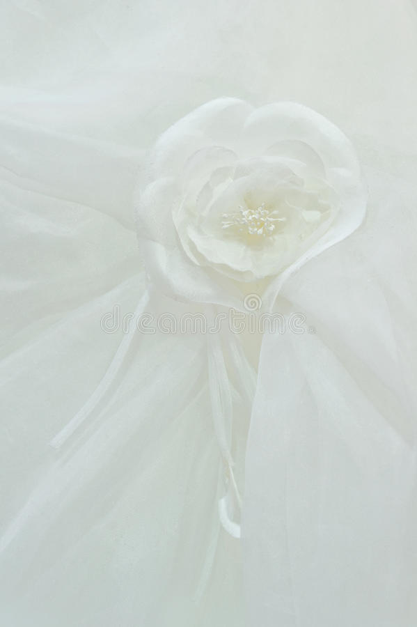 White fabric roses on a royalty free stock photo