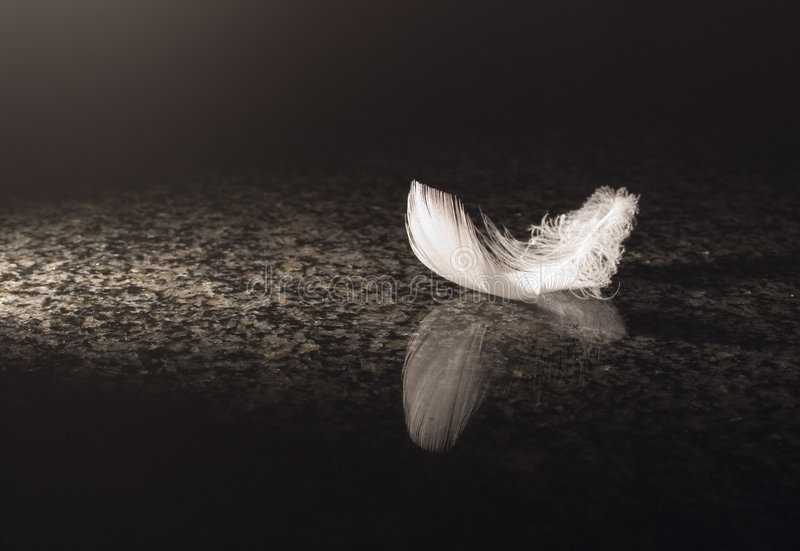 White feather on marble stock photography