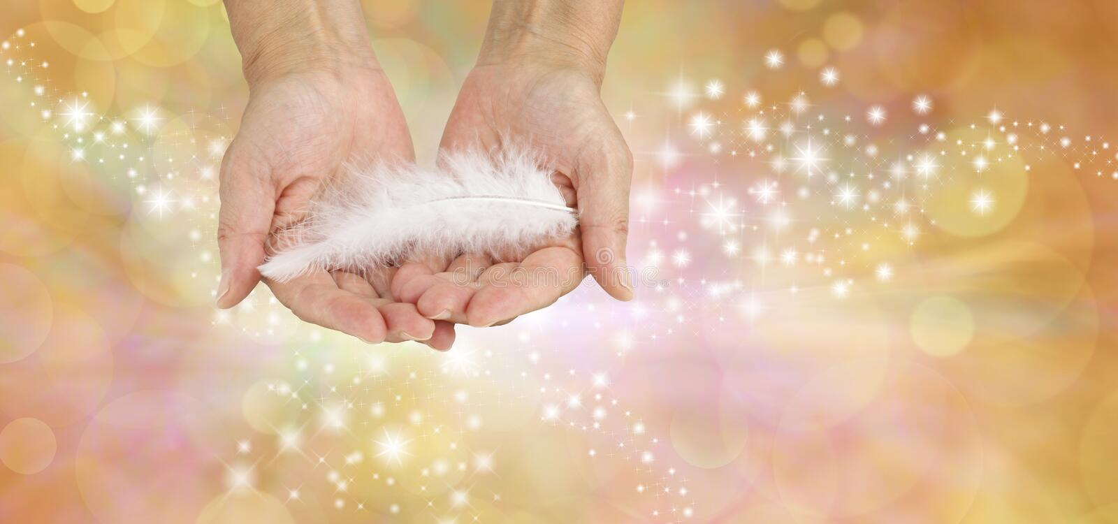 White feathers are the calling cards of Angels stock photos