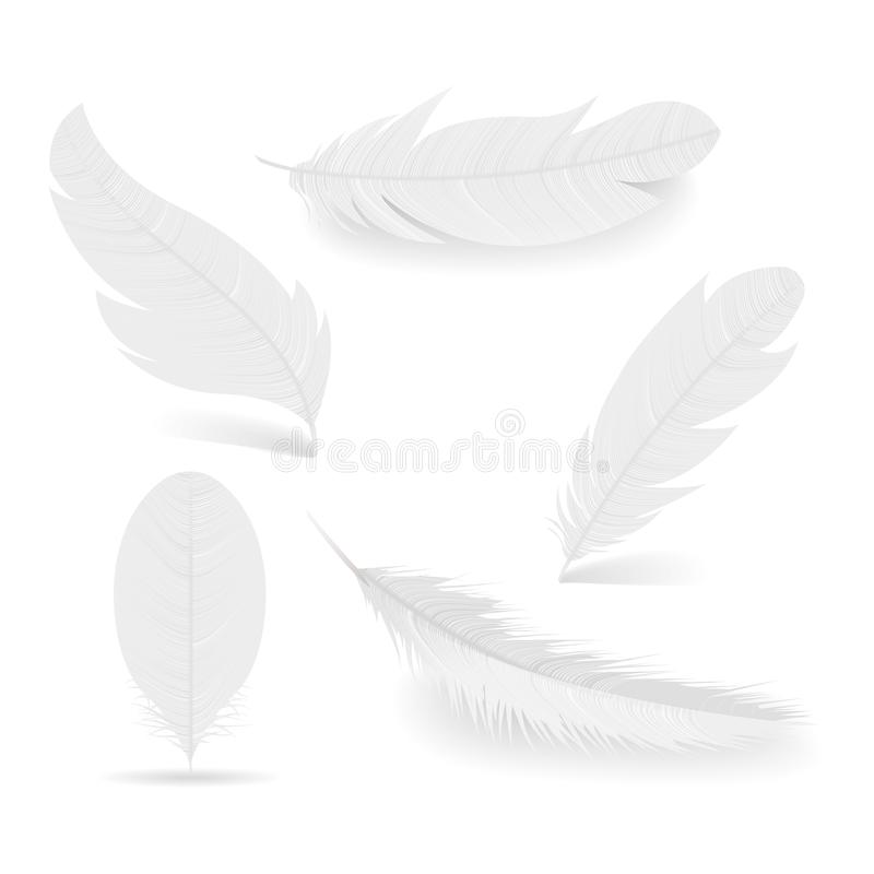 White feathers collection. Various shapes of Angel or bird detailed feathers. Realistic vector isolated illustration. royalty free illustration