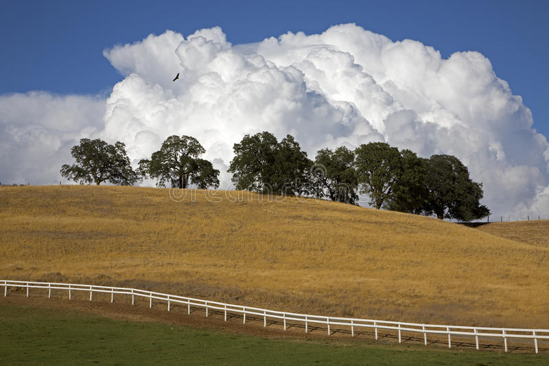Download White Fence stock image. Image of trees, cloud, clouds - 34231387