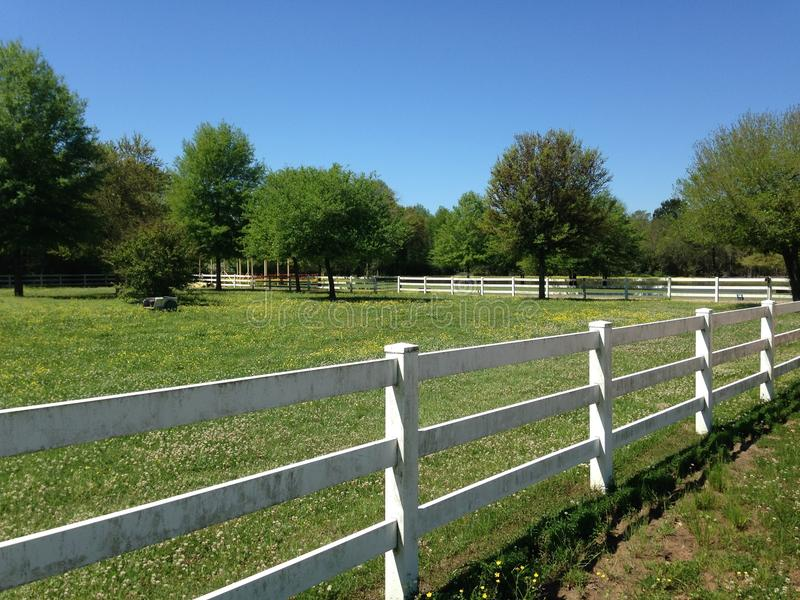 White Fence in a country setting with wild flowers stock photos