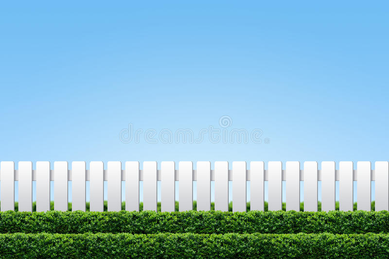 White Fence And Hedge Stock Images
