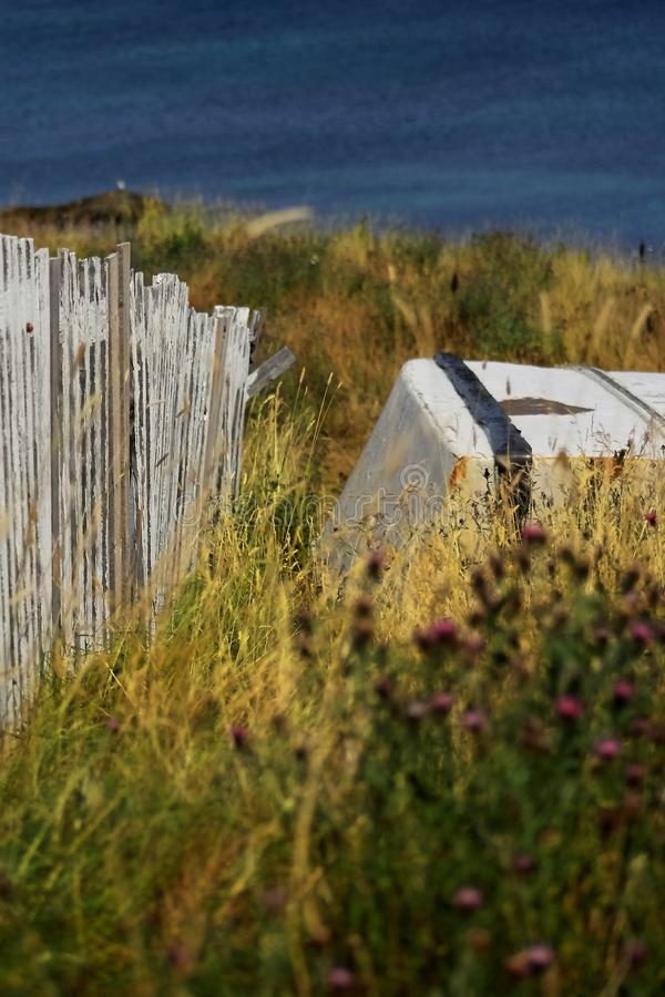 WHITE FENCE AND OLD BOAT WITH WILD FLOWERS IN NEWFOUNDLAND. WHITE FENCE AND OLD BOAT NEAR OCEAN WITH WILD FLOWERS IN NEWFOUNDLAND 2018 royalty free stock image