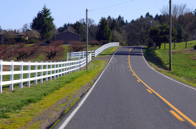 White fences & road. A road and white fences leading around the island Oregon stock photography
