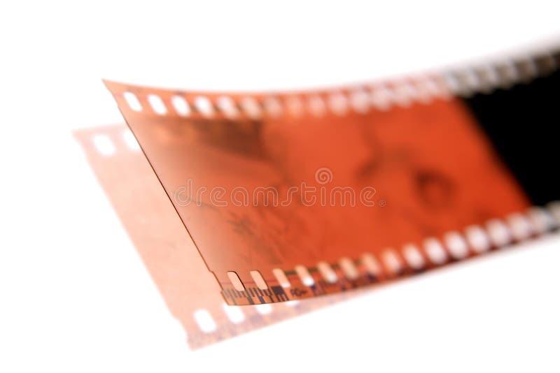 white filmstrip fotografia stock