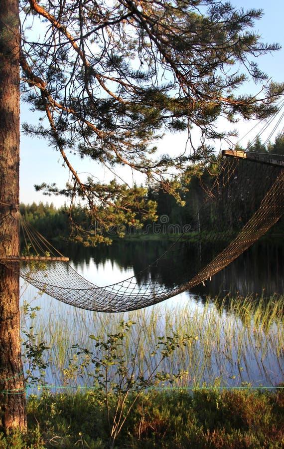 White Finnish nights, nature and lake. Karelia stock photography