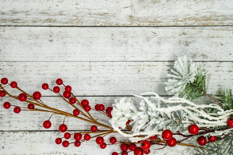 White flocked branches, twigs and berries, isolated on white wood background. Useful for Christmas and winter holiday backgrounds. Messages and banners stock images