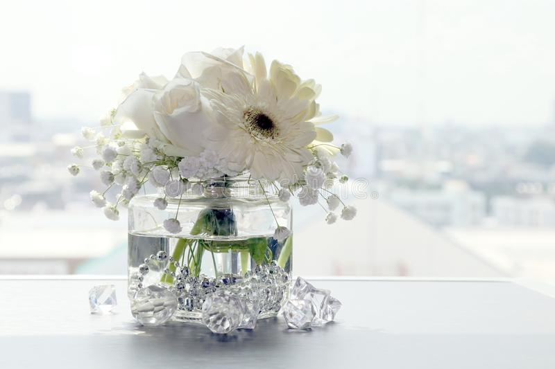 White flower beautiful in a clear glass vase, flower in vase for interior decoration office and home stock photo