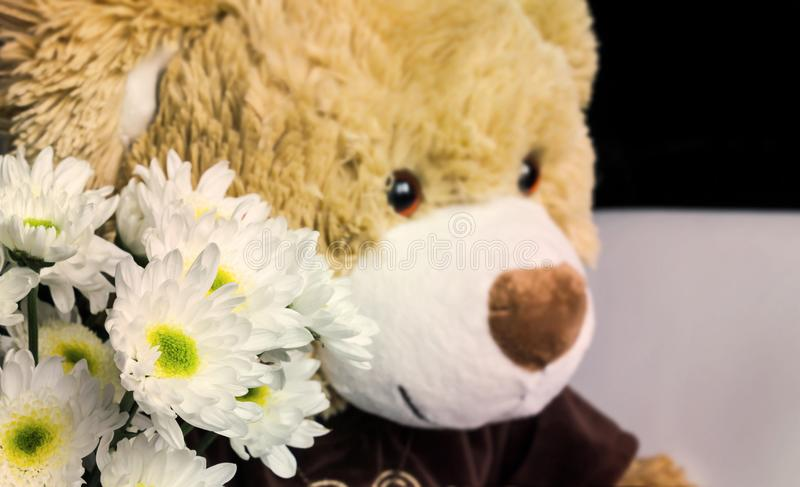 White flower bouquet with cute bear doll gift background stock photo
