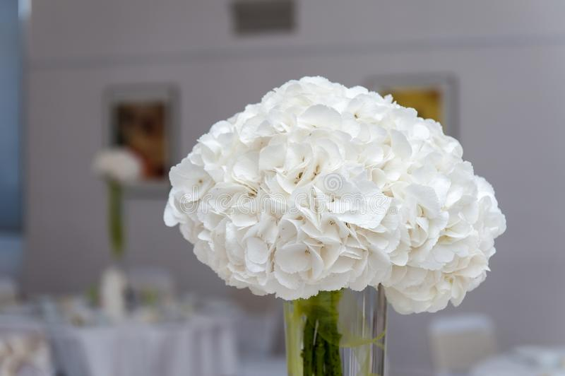 White flower bouquet in vase on table royalty free stock image