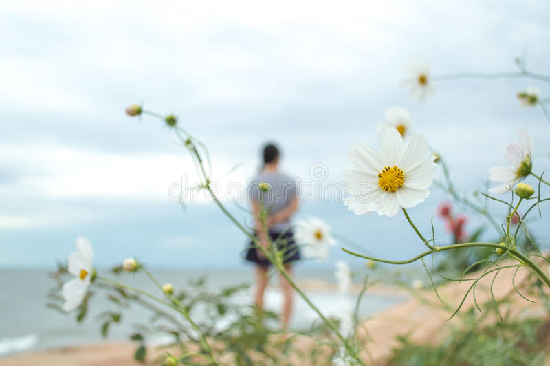 White flower with a girl background. In seaside royalty free stock photography