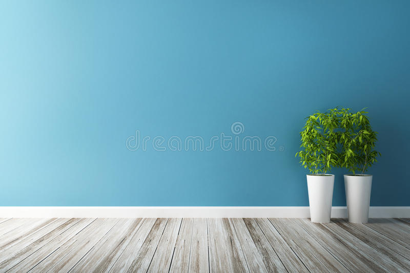 White flower plot and blue wall interior royalty free stock photos