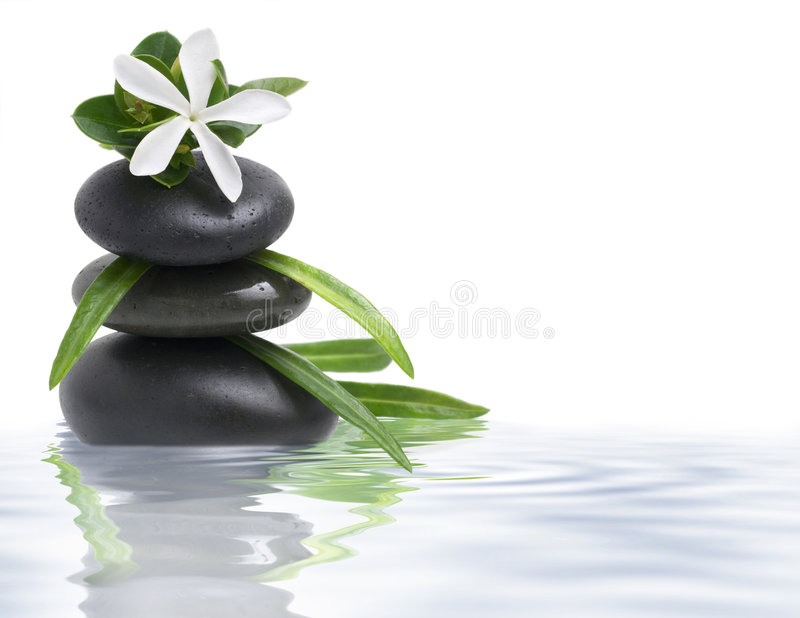 White flower and spa stones in water royalty free stock photos