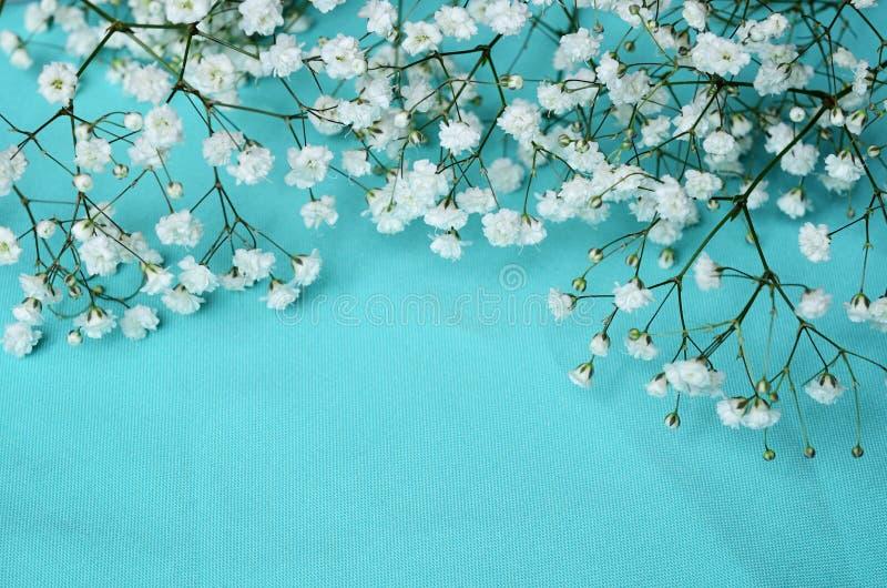 White flowers on blue background. White flowers on blue textile background royalty free stock image