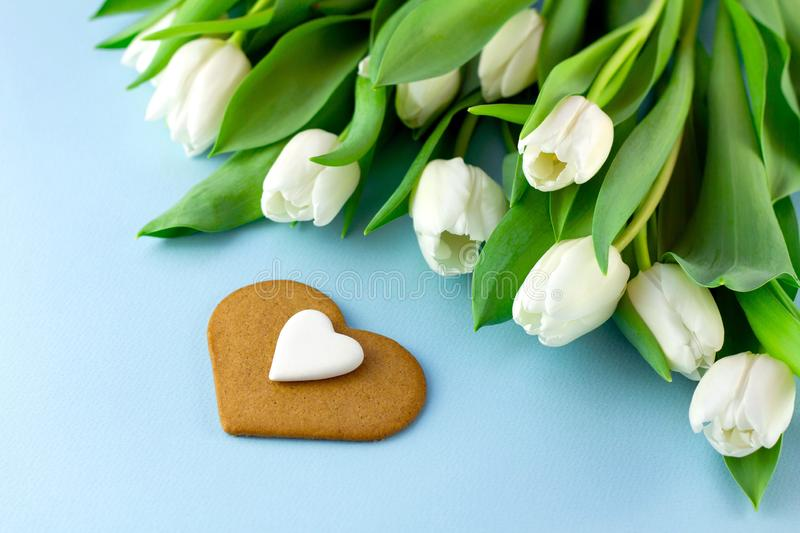 White flowers on blue background. Valentine`s Day or abstract love background with bouquet of tulips and cookie in the form of royalty free stock photos