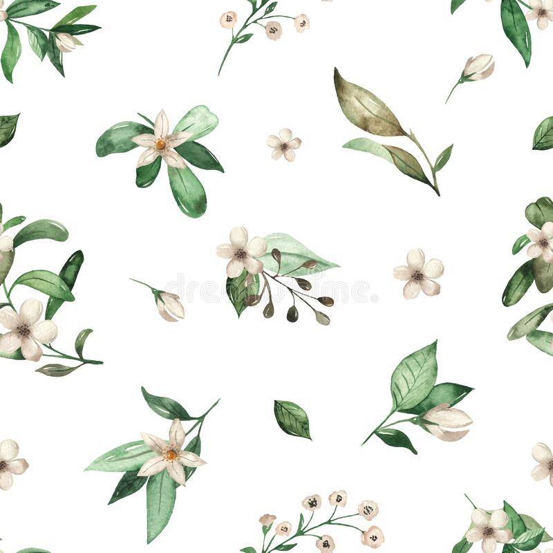 Watercolor seamless pattern with white flowers, leaves on a white background. White flowers, leaves on a white background. Watercolor seamless pattern stock illustration