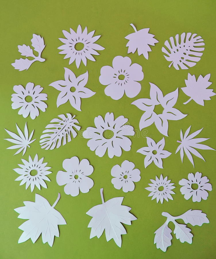 Download White Flowers And Leaves Pattern Paper Cutting Stock Image
