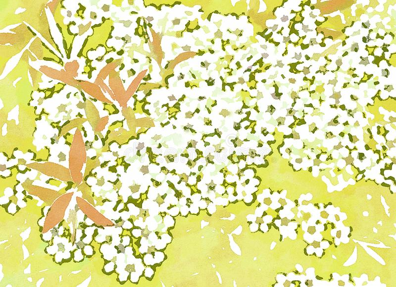 White flowers on a light yellow background. Watercolor texture. White flowers, white flower, flowering plant, watercolor texture, yellow background, yellow stock illustration