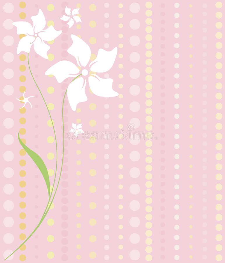 White Flowers on Pink. Delicate white flowers on a dotted pattern of pinks and yellows... lovely feminine imagery stock illustration