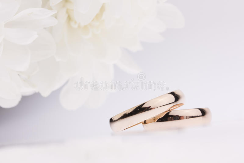 White Flowers And  Wedding Rings Royalty Free Stock Image