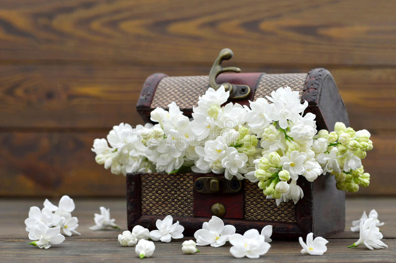 White flowers in the wooden vintage chest royalty free stock photo