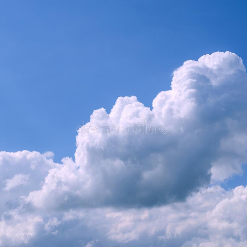 Free White Fluffy Clouds In The Vast Blue Sky. Abstract Nature Background. For Instagram Format. Square. Space For Text. Royalty Free Stock Images - 123463239