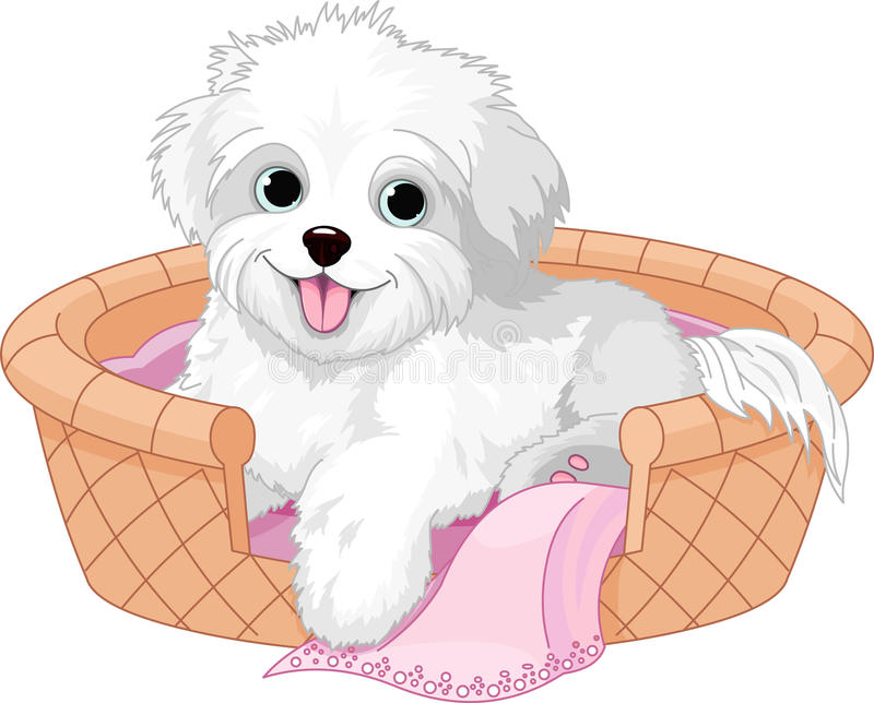 Download White fluffy dog stock vector. Image of blanket, smiling - 25971579