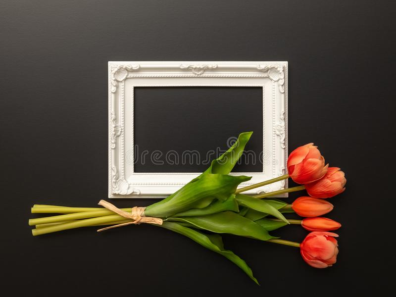 White frame on black background with tulip flowers. An image of a white frame on black background with tulip flowers stock images