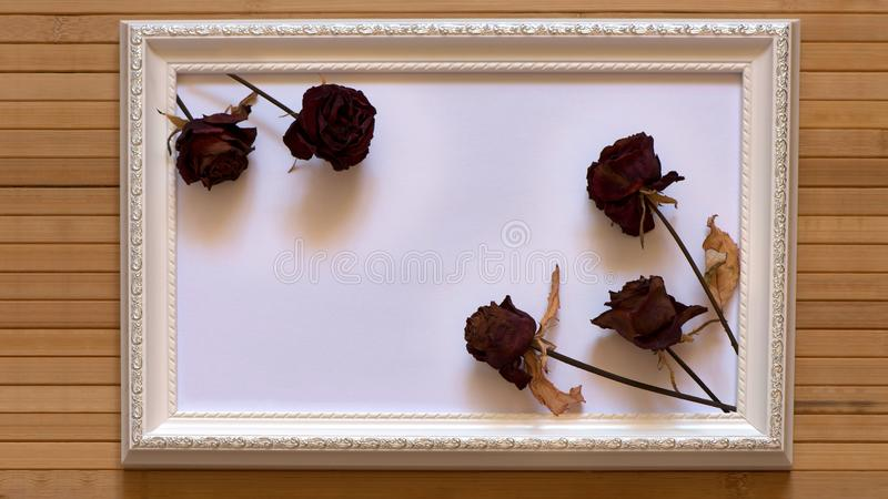 White frame with five dried red roses and empty white canvas on natural bamboo wall. stock images