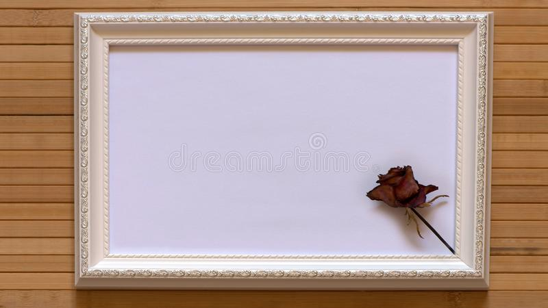 White frame with one dried red rose and empty white canvas on natural bamboo wall. royalty free stock photos