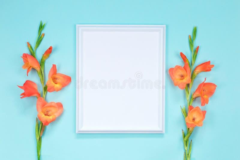 White frame with orange gladioli flowers. Postcard stock image