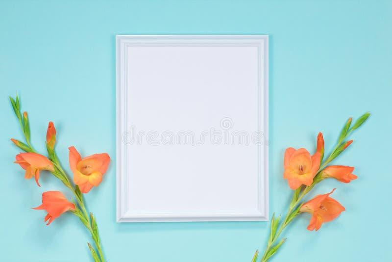 White frame with orange gladioli flowers. Postcard stock photo