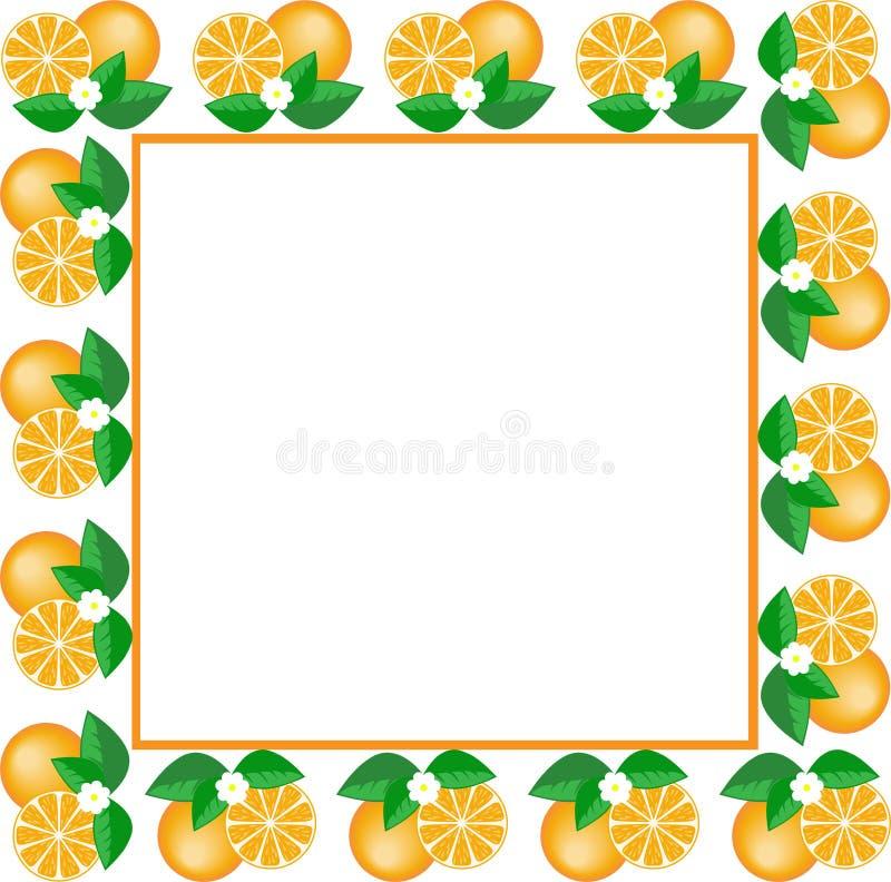 White frame of oranges royalty free illustration
