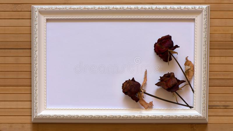White frame with three dried red roses and empty white canvas on natural bamboo wall. stock images