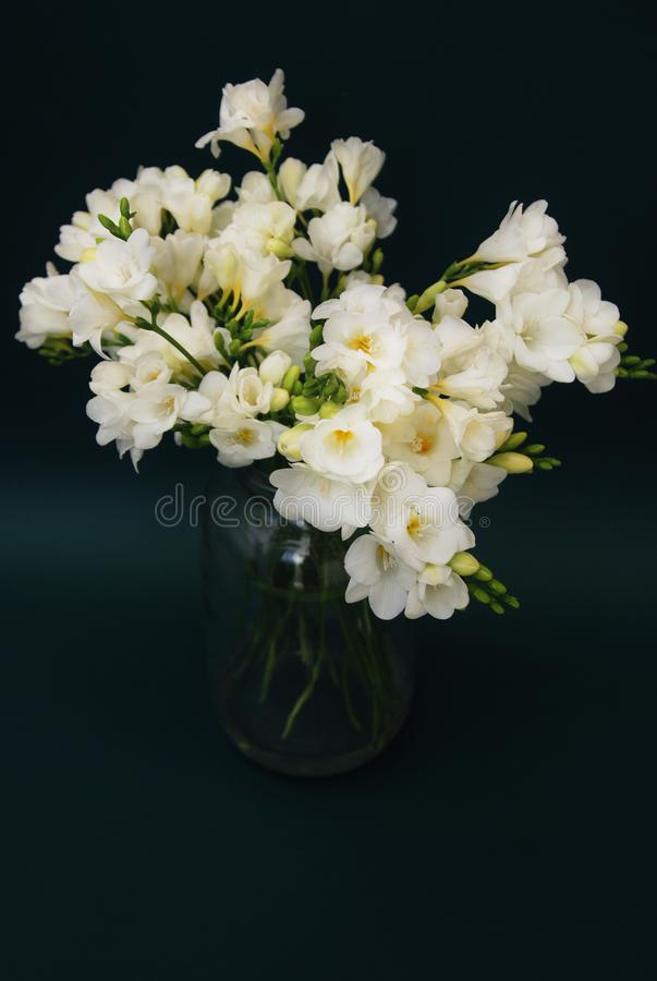 Download White Freesia Bouquet Of Flowers In Glass Vase On Black Background. Close Up. Stock Photo - Image of background, florist: 111619068
