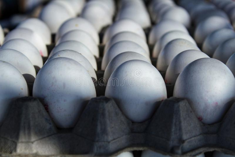 White fresh eggs at a market stall. In Santa Pola, Alicante, Spain stock photos