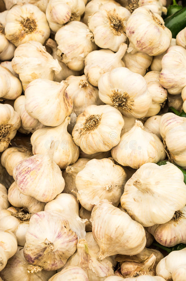 White garlic gloves on display royalty free stock photography