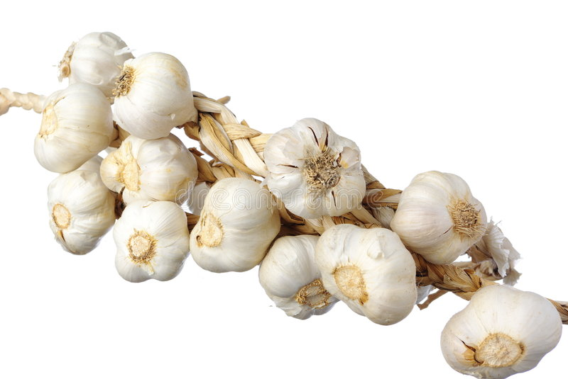 White Garlic Isolated Stock Photography