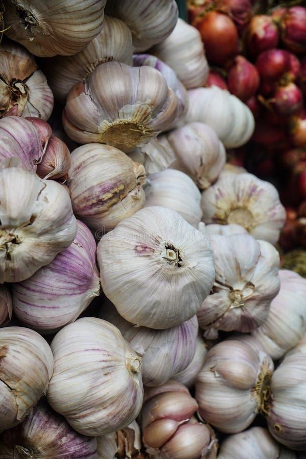 White garlic pile texture. stock photos