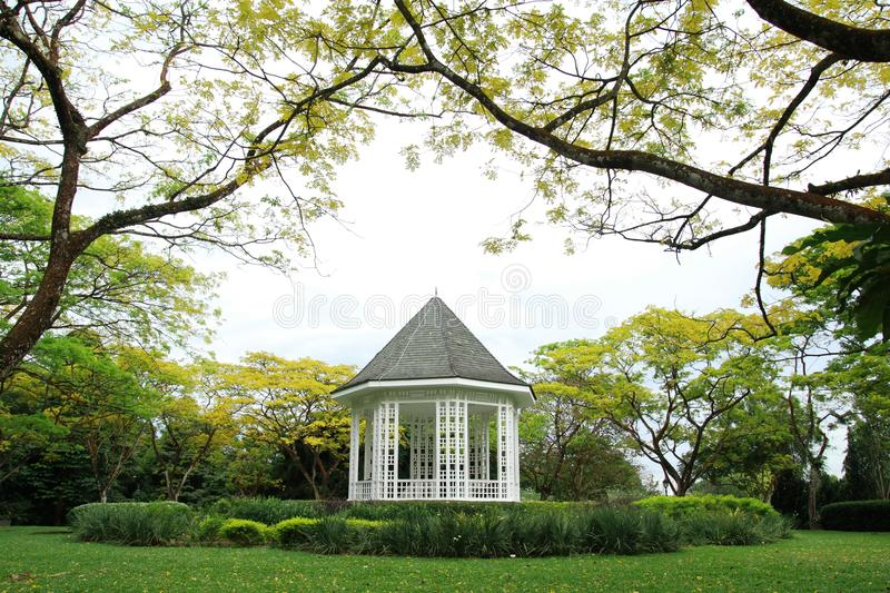 Download White Gazebo stock photo. Image of white, garden, tree - 26511372
