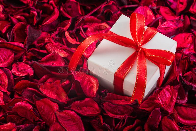 White gift box on dry flower royalty free stock photos