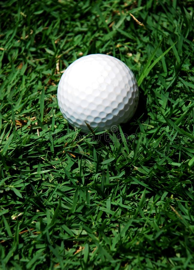 White golf ball stock photo