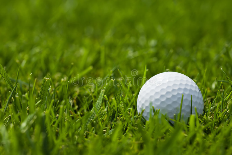 Download White Golf Ball On Fairway Close Up Stock Image - Image: 5966443