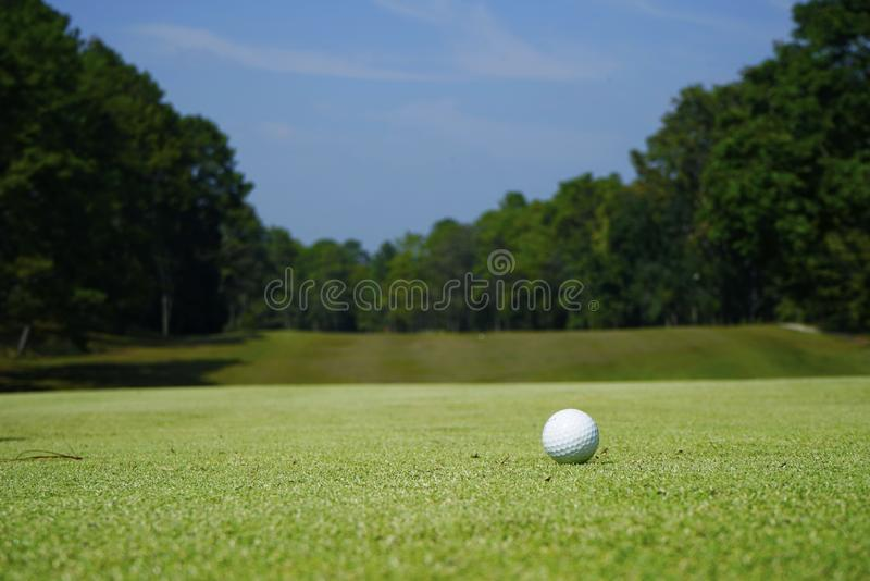 White golf ball near hole on green grass royalty free stock images
