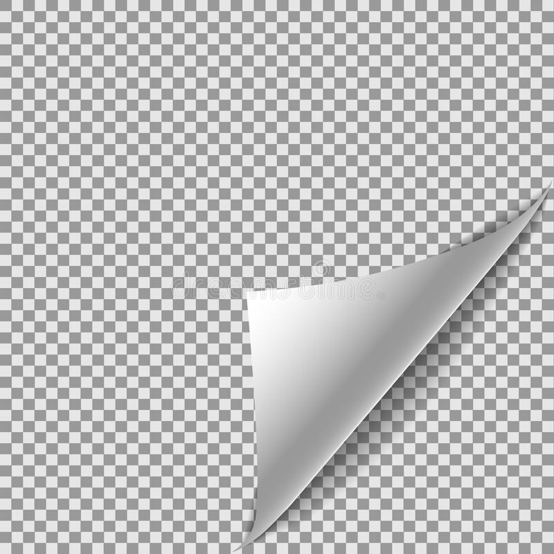 White gradient Paper curl with shadow isolated on transparent background. Turn magazine sheet. Eps1. 0. Vector template illustration for your design vector illustration