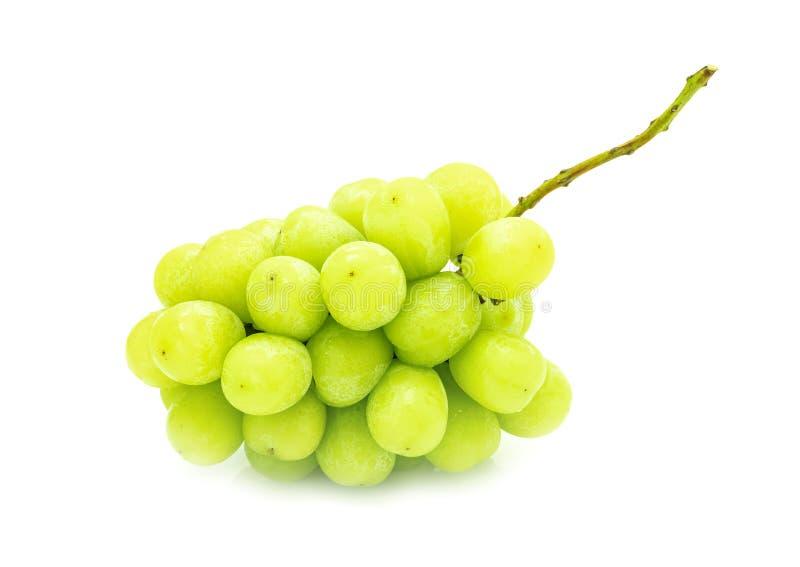 White grape isolated on white background royalty free stock photos
