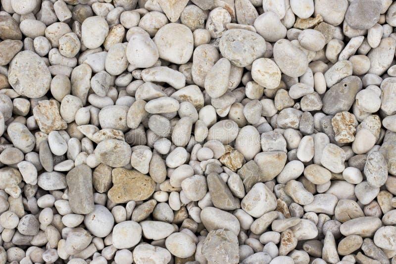 White gravel texture stock image image of gravel stone - Precio grava blanca ...